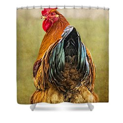Hen Party Does My Bum Look Big In This Shower Curtain