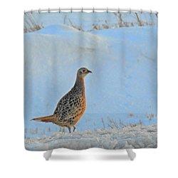 Hen Pheasant Shower Curtain