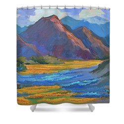 Shower Curtain featuring the painting Henderson Canyon Borrego Springs by Diane McClary
