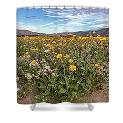 Shower Curtain featuring the photograph Henderson Canyon Super Bloom by Peter Tellone