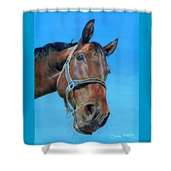 Henry Shower Curtain