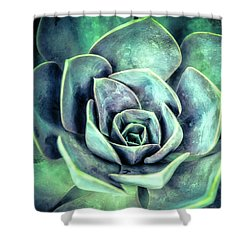 Hens And Chicks Two Shower Curtain by Julie Palencia