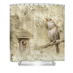 Her Morning Song Shower Curtain