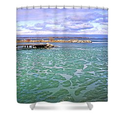 Heralds Of Spring Shower Curtain by Charline Xia