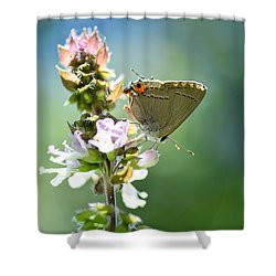 Herb Visitor Shower Curtain by Debbie Green