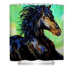 Hercules Shower Curtain