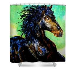 Hercules Shower Curtain by Maris Sherwood