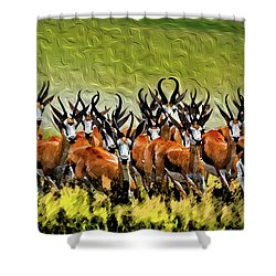 Herd 2 Shower Curtain by Bruce Iorio