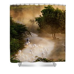 herd and farmer going home in the evening, Bagan Myanmar Shower Curtain