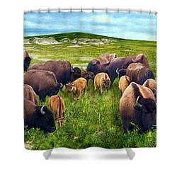 Herd Hierarchy Shower Curtain