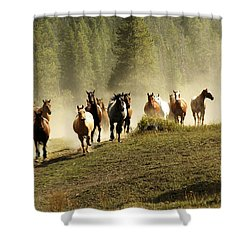 Herd Of Wild Horses Shower Curtain