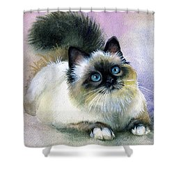 Shower Curtain featuring the painting Here Kitty by Karen Showell