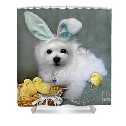 Hermes At Easter Shower Curtain