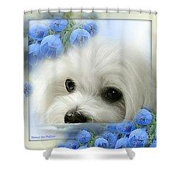 Hermes In Blue Shower Curtain
