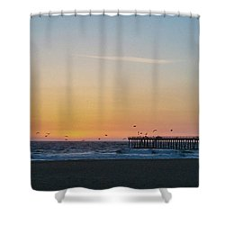 Hermosa Beach Pier At Sunset With Seagulls Shower Curtain