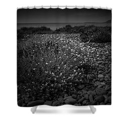Hernsea Bay And Black Combe Shower Curtain