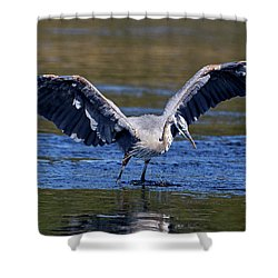 Heron Full Spread Shower Curtain