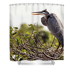 Heron In Nest Shower Curtain