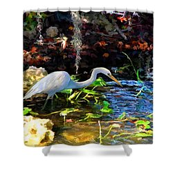 Heron In Quiet Pool Shower Curtain