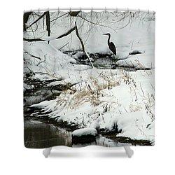 Heron In Winter Shower Curtain