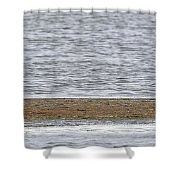 Heron On Quivira Sandbar Shower Curtain