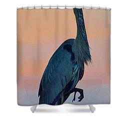 Heron Posing 2 Shower Curtain by William Bartholomew
