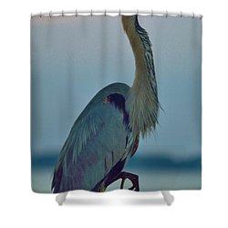 Heron Posing 3 Shower Curtain by William Bartholomew