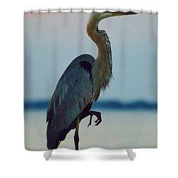 Heron Posing 4 Shower Curtain by William Bartholomew