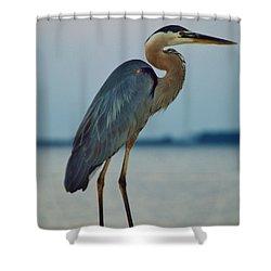 Heron Posing 5 Shower Curtain by William Bartholomew