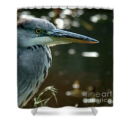 Herons Looking At You Kid Shower Curtain