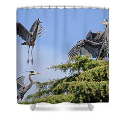 Herons Mating Dance Shower Curtain