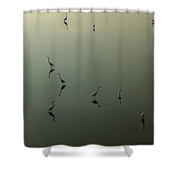 Herons On Lake 367 Shower Curtain