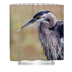Herons Stillness Shower Curtain