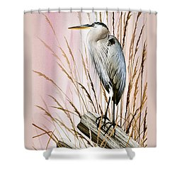 Herons Watch Shower Curtain by James Williamson
