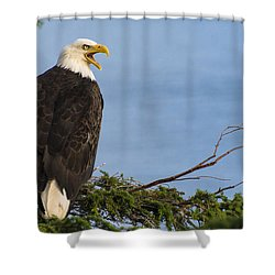 Hey Shower Curtain by Gary Lengyel