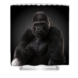 Hey There. Shower Curtain