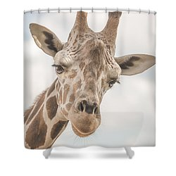 Hi There, I'm A Giraffe Shower Curtain by David Collins