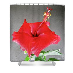 Hibiscus #1 Shower Curtain