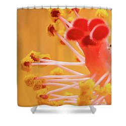 Shower Curtain featuring the photograph Hibiscus-2 by David Coblitz