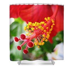 Hibiscus #3 Shower Curtain