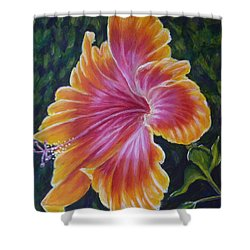 Shower Curtain featuring the painting Hibiscus by Amelie Simmons