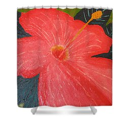 Hibiscus Shower Curtain by Barbara Yearty