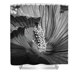 Hibiscus Black And White Shower Curtain
