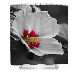 Hibiscus Bw Shower Curtain