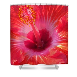 Shower Curtain featuring the photograph Hibiscus - Coral And Pink Square by Kerri Ligatich