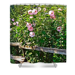 Hibiscus Hedge Shower Curtain by Randy Rosenberger
