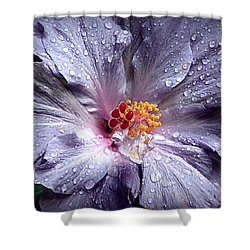 Hibiscus In The Rain Shower Curtain