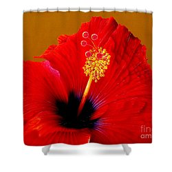 Hibiscus Shower Curtain by Jurek Zamoyski