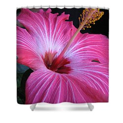 Hibiscus Photograph Shower Curtain by Barbara Yearty