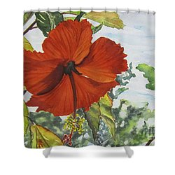 Hibiscus St Thomas Shower Curtain
